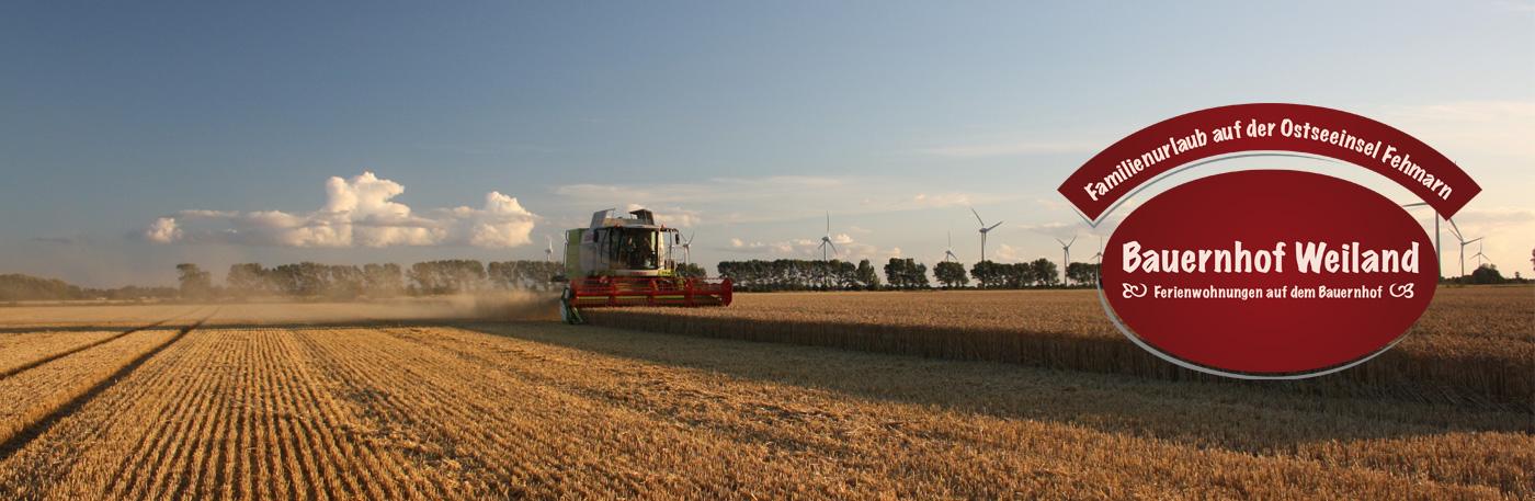 aktiver Bauernhof